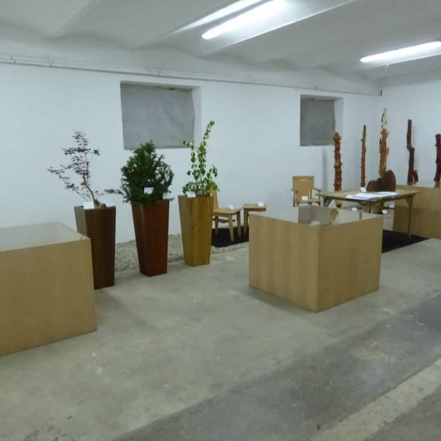 Čar lesa 2018: Arboretum Volčji Potok