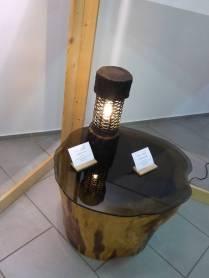 Čar lesa 2018: TIC Solčava - Center RINKA