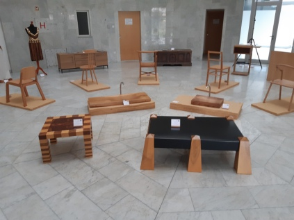 Čar lesa, Nova Gorica_2