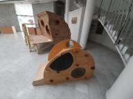 Čar lesa, Nova Gorica_3